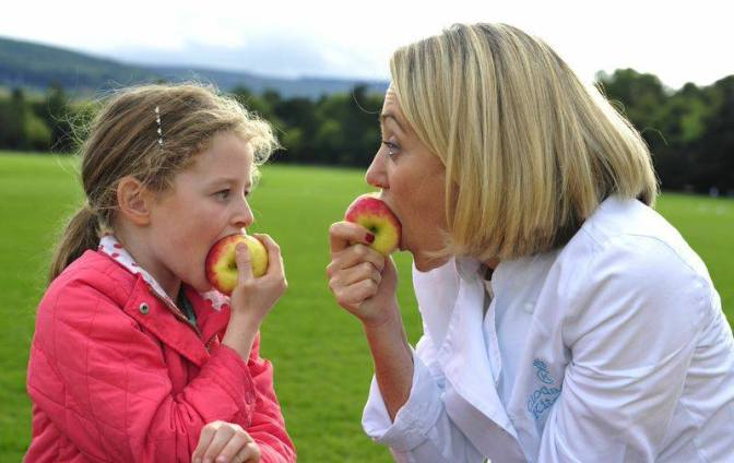 National Organic Food Fair takes place this September in Marlay Park